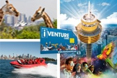 iVenture Cards